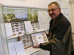 EXPONÁTEM MĚSÍCE jsou v ústeckém muzeu vzácní motýli tažní lišaji.