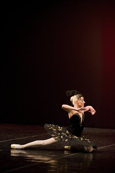 Baletní parodie měla velký úspěch.