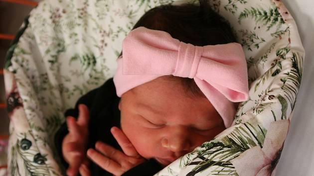 Eleonora Pittnerová se narodila Tereze Pittnerové z Ústí nad Labem 4. listopadu v 11.43 hod. Měřila 50 cm, vážila 4,2 kg