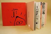 Stříbrná medaile přišla v kategorii ilustrace za zpracování povídky Roalda Dahla Čubka.