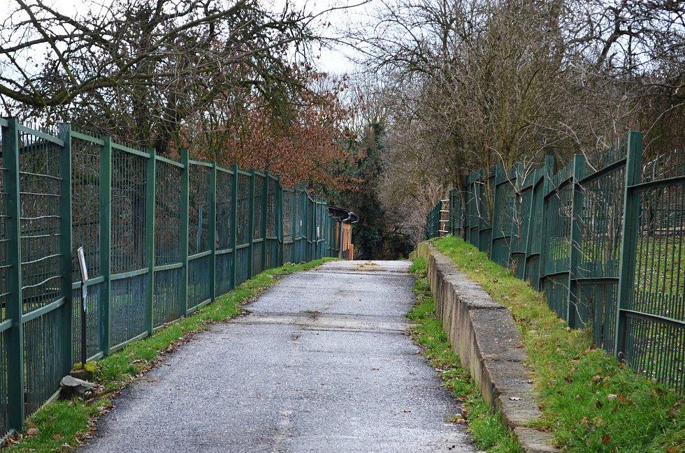 Také ZOO v Ústí nad Labem musí být kvůli opatřením proti šíření koronaviru uzavřena. Deník se tam vydal na návštěvu.