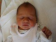 Eva Procházková se narodila v ústecké porodnici 13. 6. 2017 (22.35) Kateřině Procházkové. Měřila 48 cm, vážila 3 kg.
