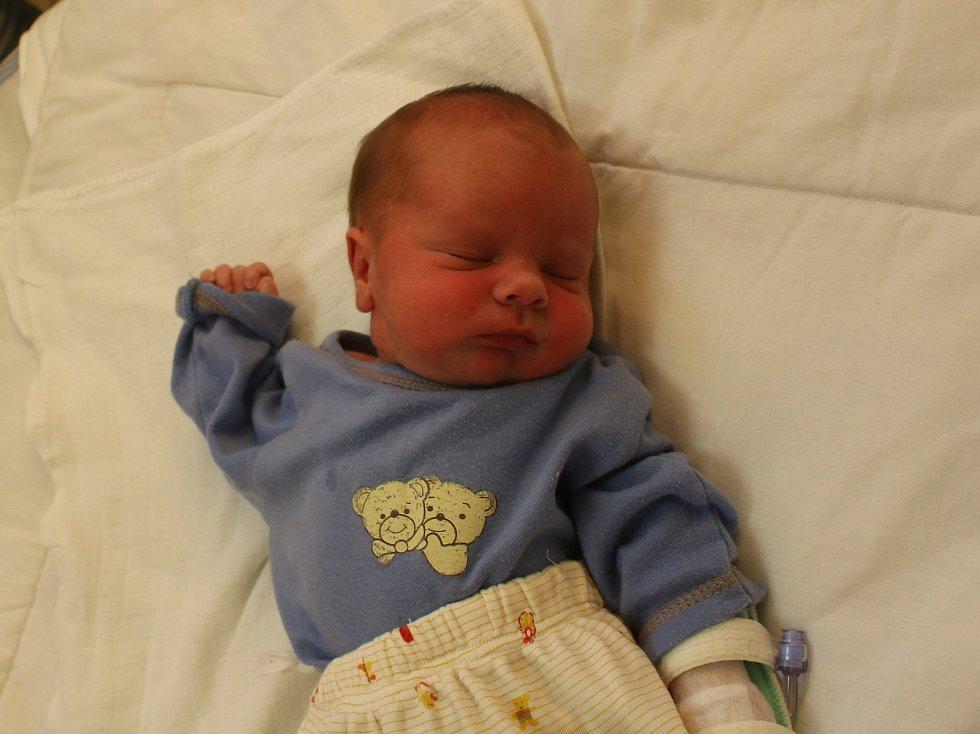 Sebastian Steklý se narodil Lucii Steklé z Ústí nad Labem 30. září ve 14.41 hod. v ústecké porodnici. Měřil 47 cm a vážil 2,61 kg.