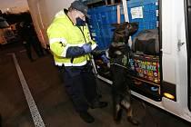 Na odstavném parkovišti dálnice D8 u Lovosic proběhla ve středu 18. listopadu v podvečer akce celní správy a policie na kontroly kamionů a motorových vozidel ze zahraničí.