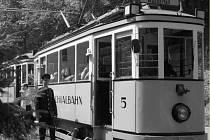 Křinická tramvaj je se svou jedinou a jen 8 km dlouhou linkou nejmenším německým dopravním podnikem provozujícím tramvaje.