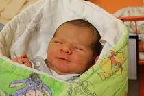 Magdaléna Kapicová se narodila Lence Kapicové z Ústí nad Labem 1. ledna ve 13.45 hodin v Ústí nad Labem. Měřila 50 cm, vážila 3,55 kg