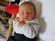 Ella Pitelová se narodila 5.12. (2.20) Kláře Klasové. Měřila 48 cm, vážila 3,49 kg.