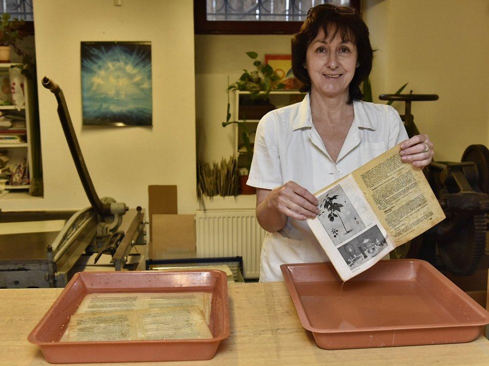 Konzervátoři a restaurátoři ústeckého muzea: Libuše Benešová