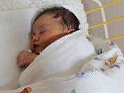 Izabel Holubková se narodila v ústecké porodnici 22.11.2016 (9.12) Drahomíře Holubkové.Měřila 52 cm, vážila 3,45 kg.