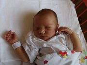 Ludmila Jarošová se narodila Ludmile Veselé ze Stadic 31. července v 19.22 hod. v ústecké porodnici. Měřila 51 cm a vážila 3,7 kg.