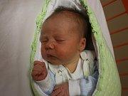 Alena Kohútová se narodila Michaele Bártové z Ústí nad Labem 6. října v 17.15 hod. v ústecké porodnici. Měřila 50 cm a vážila 3,28 kg.