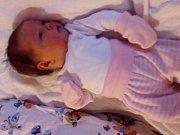 Eliška Petrovičová se narodila 11.10. 2016 (23.04) Michaele Petrovičové. Vážila 3,88 kg a měřila 52 cm.