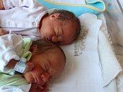 Sebastián a Maxmilián Marešovi se narodili 2.9.2016 (8.27 a 8.28) Lence Marešové. Měřili 42 a 39 cm, vážili 2,06 a 1,75  kg.