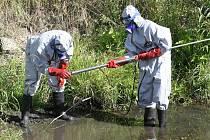 Členové Greenpeace odebírali vzorky vody a sedimentů u bývalé výpusti Spolchemie do Bíliny v sousedství západního nádraží. V létě tam objevili nebezpečné jedy.