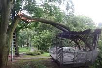 Spadlá větev poničila altán v Městských sadech.