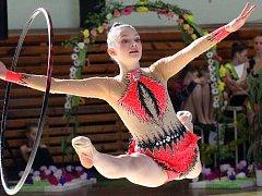 Ústecký pohár v moderní gymnastice, 28. ročníkFoto: Deník/Rudolf Hoffmann