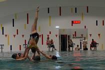 Plavecká hala na Klíši byla zavřená od srpna 2014. Sportovci trénovali v okolních městech.