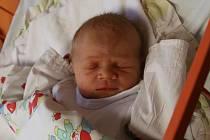 Rudolf Kreidl se narodil Lucii Vilímkové z Ústí nad Labem 9. prosince v 8.53 hod. Měřil 50 cm, vážil 3,14 kg
