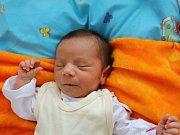 Monika Tamašová se narodila v ústecké porodnici 16. 5. 2017(8.42) Monice Tamašové. Měřila 48 cm, vážila 2,81 kg.