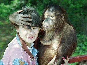 Ústecký orangutan a poslední Miss Československa