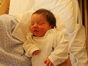 Adéla Křivková se narodila Markétě Uhlířové z Povrlů 3. září v 1.20 hod. v ústecké porodnici. Měřila 52 cm a vážila 4,16 kg.