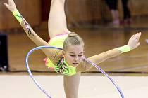 Ústecké gymnastky byly na domácích závodech úspěšné.