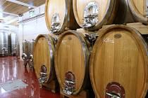 """Zatím """"nejčerstvějším"""" turistickým lákadlem Českého středohoří je nově otevřený areál Vinařství Třebívlice, které kromě vín z vlastních viničných tratí nabízí i kvalitní gastronomii."""