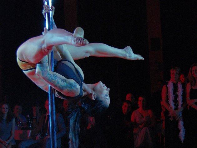 Ples sportovců v ústeckém Domě kultury.