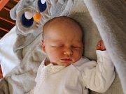 Artur Molek se narodil Kateřině Molkové z Teplic 9.dubna v 8.22 hod. v ústecké porodnici. Měřil 52 cm a vážil 3,7 kg