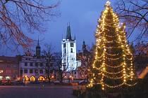 Vánoční strom na Mírovém náměstí v Litoměřicích. Foto: