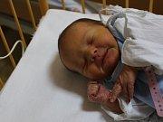 Kateřina Prokešová se narodila v ústecké porodnici 3.1.2017 (12.46) Radce Prokešové. Měřila 50 cm, vážila 3,05 kg.