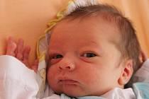 Petr Červenka  se narodil v ústecké porodnici 1.6.2015 (17.39) mamince Ivě Červenkové. Měřil 51 cm, vážil 3,30 kg.