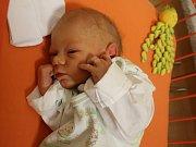 Jan Procházka se narodil Lence Labudové z Děčína 10.ledna v 7.52 hod. v ústecké porodnici. Měřil 50 cm a vážil 2,9 kg