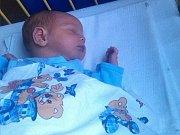 Ladislav Panský  se narodil v ústecké porodnici 28.12.2016 (18.56) Pavle Konečné. Měřil 51 cm, vážil 2,97 kg.