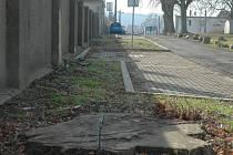 Místo historické lipové aleje dnes lidé u skorotického hřbitova najdou jen zbytky stromů.