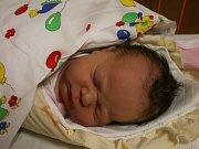 Dominika Kováčová se narodila v ústecké porodnici 20. 2. 2017(8.43) Lydii Kováčové. Měřila 52 cm, vážila 3,89 kg.