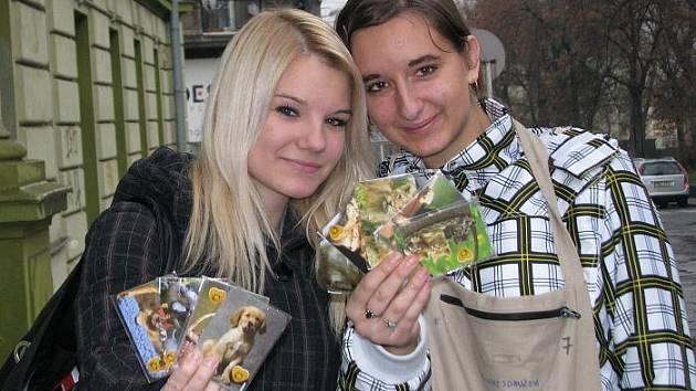 Studentky střední zdravotnické školy Klára Šrámková a Kateřina Krtková prodávaly v ústeckých ulicích magnetky, které pomohou nemocným dětem po celé České republice.