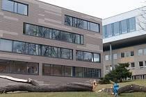 Pokácené stromy v kampusu na Klíši příliš studenty a pedagogy nepotěšily. Magistrát ale kácení povolil kvůli špatnému stavu dřevin.