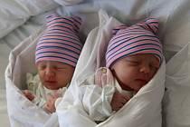 Petra a Anna Hájkovy se narodily Janě Mackové z Ústí nad Labem 18. června ve 13.25 / 13.26 hodin v Ústí nad Labem. Měřily 48 / 46 cm, vážily 2,48 / 2,15 kg