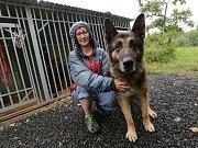 V nově otevřeném zvířecím útulku našla svůj domov spousta opuštěných koček a psů.