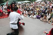 Sdružení Romano jasnica uspořádalo na sobotní odpoledne 6. Různobarevný festival na trmickém zámeckém parku.