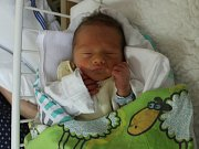 Mireček Libich se narodil Verče Libichové z Ústí nad Labem 2. září v 14.58 hod. v ústecké porodnici. Měřil 43 cm a vážil 2,3 kg.