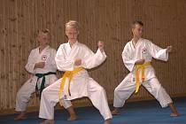Mladí karatisté ústeckého oddílu SK Kamura-ryu Shotokan absolvovali soustředění v Chřibské u Rumburka.