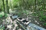 Aleši Pelikánovy včelaři z Třebívlic na Litoměřicku ukradli zloději 19 včelích úlů plných medu a několik včelích oddělků.