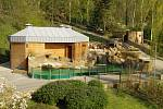 Expozice tučňáků brýlových, oceněná prvním místem v soutěži Bílý slon
