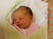 Eliška Kuišová se narodila v ústecké porodnici 19.12.2016 (0.55) Jaroslavě Svobodové. Měřila 49 cm, vážila 3,10 kg.
