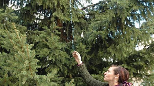 Speciální osvětlení na stromě v atriu musí být vyměněno.