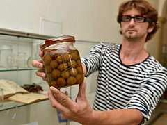Ústecké muzeum vystavuje svou sbírku historických zavařovacích sklenic, příslušenství k zavařování i knihy receptů coby exponát měsíce srpna.