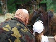 Slavnostní otevření pavilonu orangutanů