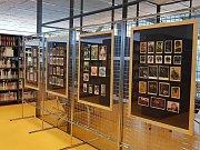 Děti z trmické školy vystavují v ústeckém informačním centru.
